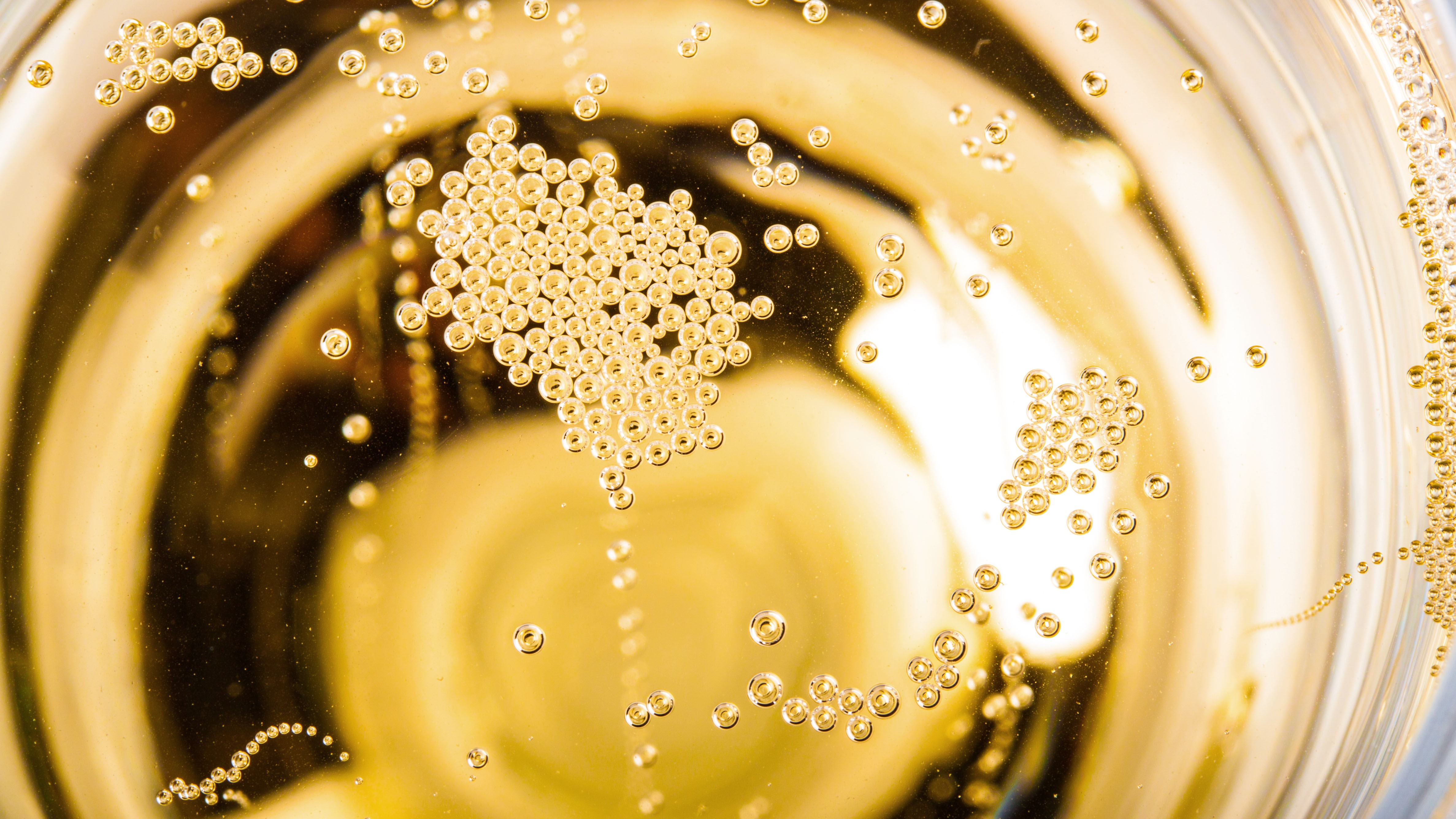 Close-up of champagne